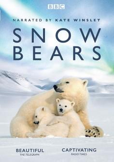 Putovanie medveďov bielych