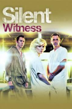 Tichý svedok